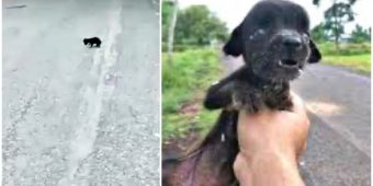 Blind Baby Was Shaking From Hunger Roamed Back & Forth And They All Passed Her By