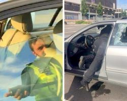 Cop Forced To Smash Window To Save Dog Dying In Hot Car And Owners Angry With Cop