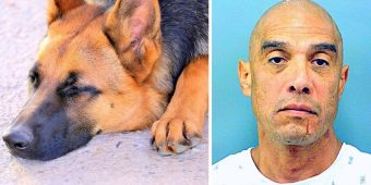 Man Ties Dog Behind His Pickup Truck & Drags Him To Death, Flees When Confronted