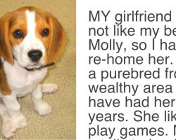 Girlfriend Gives Partner An Ultimatum, Demands Either The Dog Goes Or She Goes