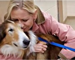 Jake Gave 16 Loyal Years To Family That Leaves Him, But Then It All Turned Around