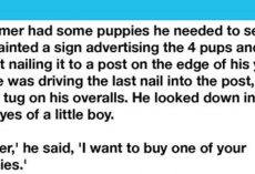 Little Boy Picks Out Crippled Pup From The Farmer's Litter To Buy
