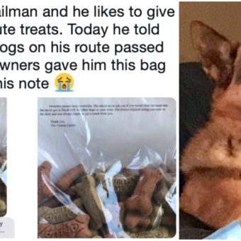 """Mailman Gave Treats To Dogs On His Route, And When One Died, Owners Gave Him A """"Sweet Note"""""""