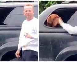 "Man Vigorously Slaps Dog In Face & ""Laughs"", Police Need Help Tracking Him Down"
