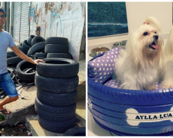 """Man Transformed Old Tires Into """"Cozy"""" Little Dog Beds For Animals"""