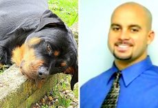 "Well-Known Chiropractor Gets ""Annoyed"" At Barking Dog, Chases And Shoots Him 7 Times"