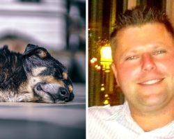 Dog Dies After Drunk Owner Kicks Him Over 100 Times For Peeing On Kitchen Floor