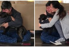 Dog Dad Breaks Into An Emotional 'Ugly Cry' After Learning He's A Foster Failure