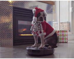 Dog In Santa Suit Takes A Ride On A Roomba For The Holiday Season