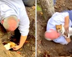 Missing Dog Was Stuck Down A Fox Hole For 3 Days, Dad Rescues Her & Breaks Down