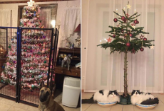 22 Fed-Up Owners Who Found Clever Ways To Pet-Proof The Christmas Tree