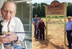 Senior Millionaire Donates Life Savings To Build A 400-Acre Wildlife Sanctuary