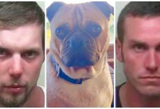 Duo Tortures Employer's Pug, Uses Him As Target Practice & Dumps Body In Lake