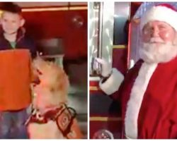 Little Boy Denied Visit To Santa Claus Because He Has A Service Dog