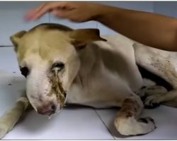 Tumor Made Him Cry Pus & No One Would Touch Him Till God Sent Him His Way