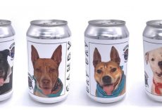 Brewery Puts Shelter Dogs On Beer Cans Hoping They'll Get Adopted