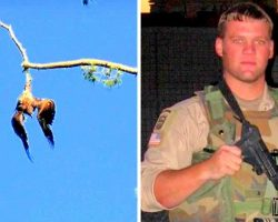 Town Refuses To Help Poor Eagle Hanging From A Tree, So Army Veteran Steps In