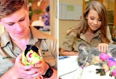 Steve Irwin's Family Carry On His Legacy By Saving 90,000 Animals From Bushfires