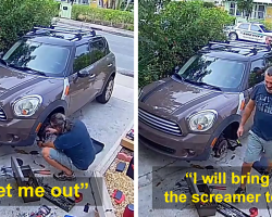Cops Show Up To Man's House Because His Parrot Screaming 'Let Me Out' Sounds Like A Woman