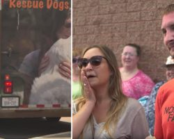 Couple Adopts Dog Without Meeting Them First & Then A Rescue Truck Pulls Up & Trailer Door Opened