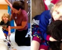 Kind Breeder Donates Puppy To Sick Boy Who Fell In Love With Hospital's Therapy Dog