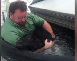 Man Finds Baby Cow Freezing In The Snow, Runs And Fires Up The Hot Tub