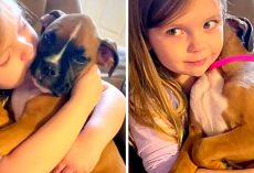 Girl Cradles Little Puppy In Arms & Sings A Soothing Lullaby To Help Her Sleep