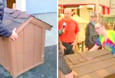 Students Undertake Noble Project To Help Homeless Pets, Build & Donate Doghouses