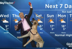Weatherman Was In Hysterics While Trying To Read The Local Forecast