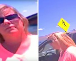 Woman Locks Her Dogs In 114F Hot Car & Cop Asked Her To Sit Locked In Same Hot Car