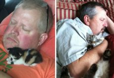 19 People Who Wanted Nothing To Do With Cats