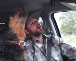 Dog Loves Country Music, But One Song Is Her Very Favorite