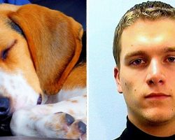 """No Jail Time For Monster Who Beat Dog To Death For """"Disobeying"""" Potty Commands"""