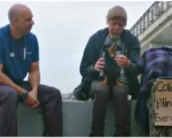 Man Living On Streets Couldn't Lose His Dog, Prayed For Miracle & Vet Showed Up