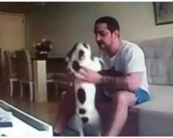 Dog Owner Sees Hidden Camera Footage Of Fiancé, Immediately Calls Off Wedding