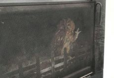 Family Looks At Their Fireplace, Sees An Owl Waving Back At Them