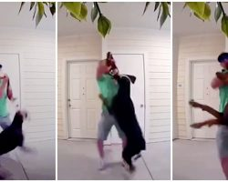 Man Gets Mad At His Ex, Steals Her Doberman & Viciously Chokes Dog With Leash