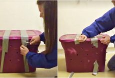 Woman Worked Quickly To Uncover Taped & Melted Container With Crude Air Holes