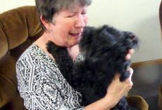 After Weeks Of Separation, Elderly Woman Tearfully Reunites With Her Missing Dog
