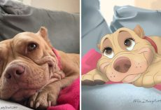 """Amazing Illustrator """"Disneyfies"""" Peoples' Dogs Into Disney Characters"""