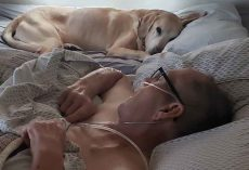 Air Force Veteran And His Loyal Dog Pass Away Within Hours of Each Other