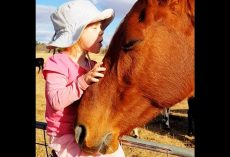 "Horse Comes Running Every Time 3-Year-Old Girl Starts Singing ""Heal The World"""