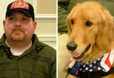 "Veteran With PTSD Is Denied A Service Dog, Then He Gets Called To A ""Conference"""
