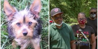 Car With Dog Inside Stolen From Family Visiting Grave Of Deceased Father