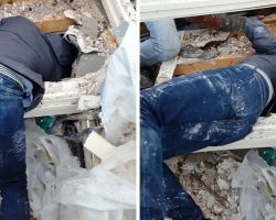 Man Returns & Searches For His Puppy 2 Days After His Home Collapsed In Tornado
