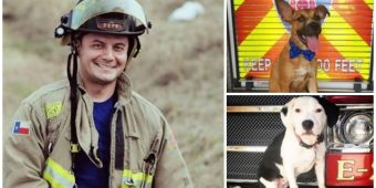 After Firefighter's Adopted Pup Is Tragically Killed, He Honors His Legacy