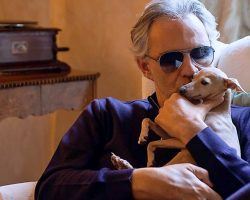 Andrea Bocelli's Searching For His Dog Who Fell Off Boat & Disappeared Into Sea
