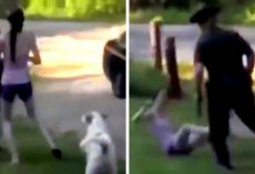 Officer Draws Gun On Woman's Dog, Woman Jumps In Front Of Dog To Save Him