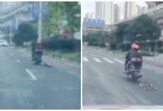 Two Men Drag A Dog Over One Mile On A Scooter As A Form Of Punishment