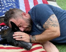 Navy SEAL Drapes Flag Over His Dying K9 Partner & Hugs Him In His Final Moments